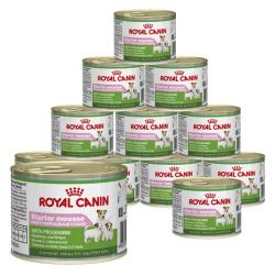 PACK AHORRO Royal Canin Starter Mousse 12x195g