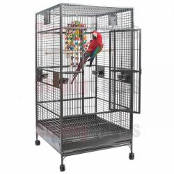 SC Strongages Single Macaw 190hx100x100cm