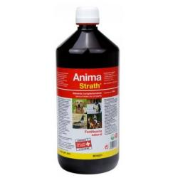Stangest Anima Strath Suplemento Fortificante 1L