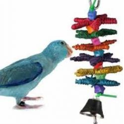 CoolToys Stars Juguete Aves Mini