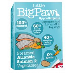 PACK AHORRO Big Paw Salmón 100% Natural 7x150gr